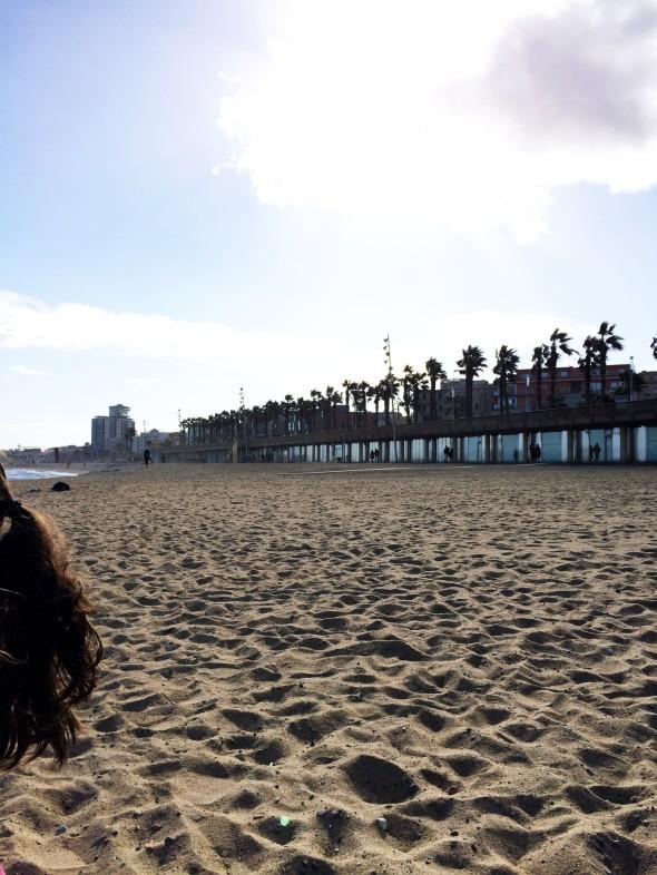 beach tail